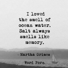 Salt always smells like memory