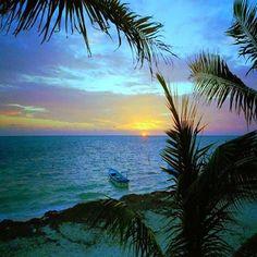 Tropical paradise...