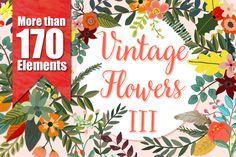 Vintage Flowers III ~ Illustrations on Creative Market