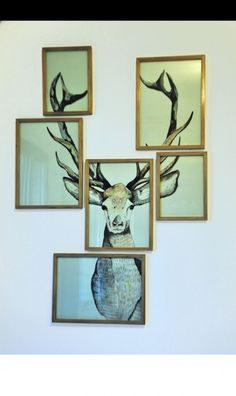Dorm Room Décor & Decorating Ideas