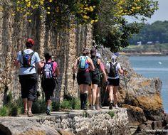 Marche Nordique Golfe du Morbihan Cardio Yoga, France 3, Nordic Walking, Walk Run, Cross Training, Golf Courses, World, Dolphins, Fenced Garden