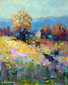 Yellow Field by Trisha Adams Oil ~ 30 x 24
