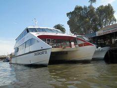 Reinaldo Fiocca: suban, al paseíto por el delta en catamarán