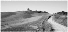 Panoramio - Photos of the World- Tuscan countryside