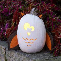 Halloween Owl Pumpkin