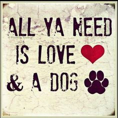 All Ya Need Is Love & A Dog #lovedogs #animallover
