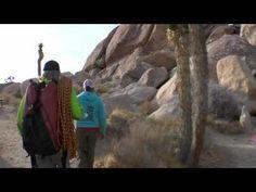 Origins: Joshua Tree (Chris Linder)