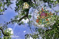 """Zauberhafte Welten im """"Garten der alten Dame"""". Eine Verbindung aus meinen """"Zauberweltzeichnungen"""" mit Fotografien aus meinem Garten: Illustrationen für die Geschenkbuchausgabe."""