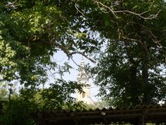 Old church tower seen through nut tree branches / Credit: communicationxdevelopment.wordpress.com