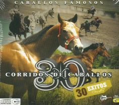 Various Artist - 30 Corridos De Caballos