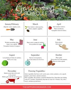 Garden Schedule Free printable Garden Schedule to help you plan your gardening tasks throughout the year.Free printable Garden Schedule to help you plan your gardening tasks throughout the year.