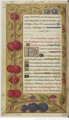 vue 60 - folio 26v