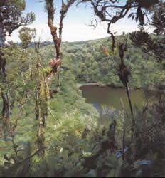 PARQUE NACIONAL BRAULIO CARRILLO - COSTA RICA - CHILE POST™