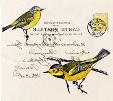 . Bird postcard printable