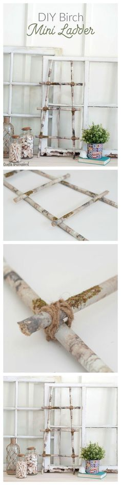"I was really excited about making this ""faux"" DIY birch mini ladder.  It really was one of the easiest projects I've worked on in a long time. Plus a perfect home decor project!"