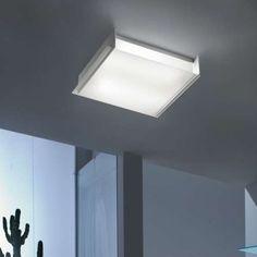 Nemesi PP Wall Ceiling Light