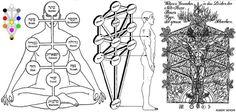 Tree of Life Supernatural Symbols, Solomons Seal, Occult Symbols, Crowley, Tantra, Tree Of Life, Sacred Geometry, Runes, Magick