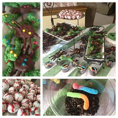 Survivor themed birthday party eating challenge complete with Oreo spiders, rice crispy snakes, pudding and gummy worms dirt, and donut eyeballs