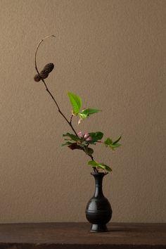 2012年5月10日(木)   晩春の情景。山の鼓動を感じます。   花=夜叉五倍子(ヤシャブシャ)、岩梨(イワナシ)   器=古銅請来形華瓶(鎌倉時代)