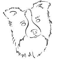 On Coloring Pages Dog And Puppy Breed Pictures Two Dogs