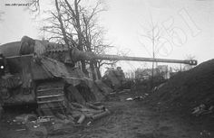Risultati immagini per panzer 1945 Tiger Ii, Hell On Wheels, Tiger Tank, Ww2 Tanks, Battle Tank, World Of Tanks, Photo Dump, Armored Vehicles, Military History