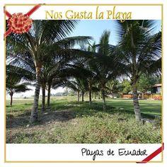 """Ven #Travel #PlayasEcuador #beachlife #tropical #tourism #BestPlace #beachfront #weekend #escape #relax #loveBeach #AllYouNeedIsEcuador #bestplaceonearth…"""