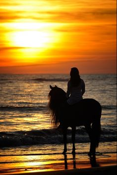 "Sunset horseback riding at the beach... someday when I get over the fact that I'll have to ride a ""dude"" horse."