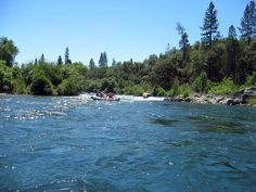 American River Rafting....as close to Cache Creek as I can find on Pinterest...