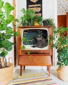 Flea Market Decorating, Diy Casa, Deco Originale, Cat Room, Cat Furniture, Barbie Furniture, Furniture Design, Aesthetic Rooms, Home And Deco
