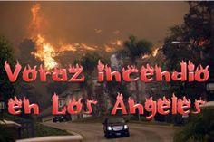 En medio de un invierno con picos de temperaturas bajas, que paralizó parte del norte de los Estados Unidos, se produce un voraz incendio en...