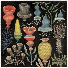 Illustration by Bjorn Rune Lie Graphic Design Illustration, Graphic Art, Illustration Art, Motif Floral, Arte Floral, The Flowers Of Evil, Illustration Botanique, Art Nouveau, All Nature