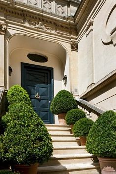 Boxwood lined entry in Paris I recommend we use every elements of this picture for one of our clubhouses. The combination of simple and large arch with the details above, the warmth, the trimmed bushes, steps...