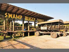 Swamp Buggy Tour $30.00 #funsherpa #FL