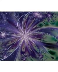 """Limited Edition - Fractal SeriesManufacturer: Mystic Stitch Category: Other SKU: 3937 ProductType: Book or Leaflet  Completed Size: 21 3/8"""" x 18 1/4"""" Stitch Count: 300w x 256h Floss: DMC Floss Fabric: 14 Count Aida$16.00"""