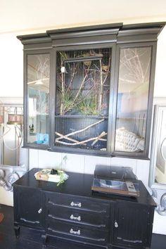 Alysia's Stunning Vintage Sanctuary — House Tour | Apartment Therapy