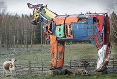 The Giant Cows of Miina Äkkijyrkkä.
