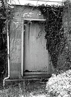 door, ivy, rusted, vintage,  schedel garden and arboretum, elmore, ohio, black, white, michiale schneider photography, interior design, framed art, wall art