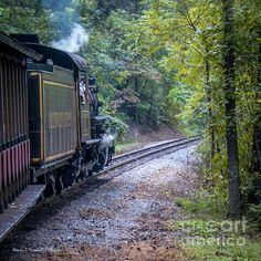 Going Around the Bend photograph by Nancy L. Marshall - Going Around the Bend Fine Art Prints and Posters for Sale #FineArtAmerica Riding the stream train at Dollywood, Pigeon Forge, Tennessee.