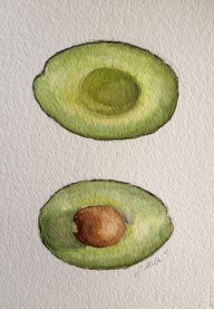 Avocado - Original watercolor on paper by Sarah Miller