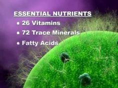 Find out what Glyconutrients are and how it's changing lives around the world!  www.mannapages.com/estellepeetz