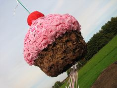 DIY Cupcake Pinata