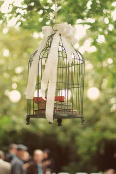 birdcage and vintage books hanging in the trees!
