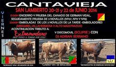 torodigital: Cantavieja 20-21-22 Junio- San Lamberto