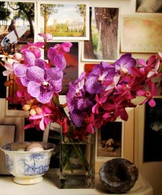 Radiant Orchid: The Feng Shui Of Pantone's Color Pick For 2014!