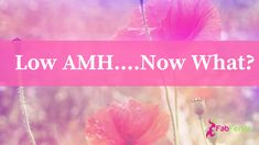 Low AMH…what does it mean for your fertility? Get Pregnant Fast, Getting Pregnant, Ovarian Follicle, Pookalam Design, Endocrine Disruptors, Feeling Helpless, Now What, Hormone Imbalance