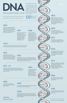 DNA Timeline In 1953, James Watson, Francis Crick, Maurice Wilkins, and Rosalind Franklin and colleagues published several landmark papers on the structure of DNA. That significant research changed the way that we think about and view the blueprint for life. Their discoveries paved the way for many others and enabled them to make their own major advancements in the genetics field.