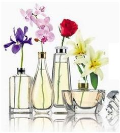 Vasinhos perfumados