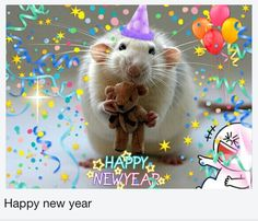 5 alternativas 2.0 al típico whatsapp de Feliz año nuevo
