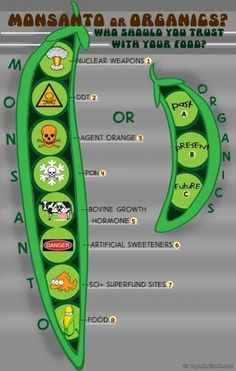 Monsanto or Organic? via topoftheline99.com