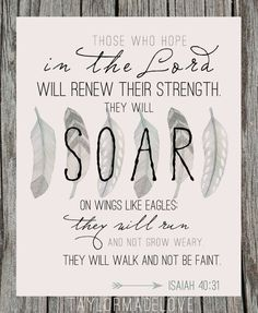 isaiah 40:31 - Yahoo Image Search Results